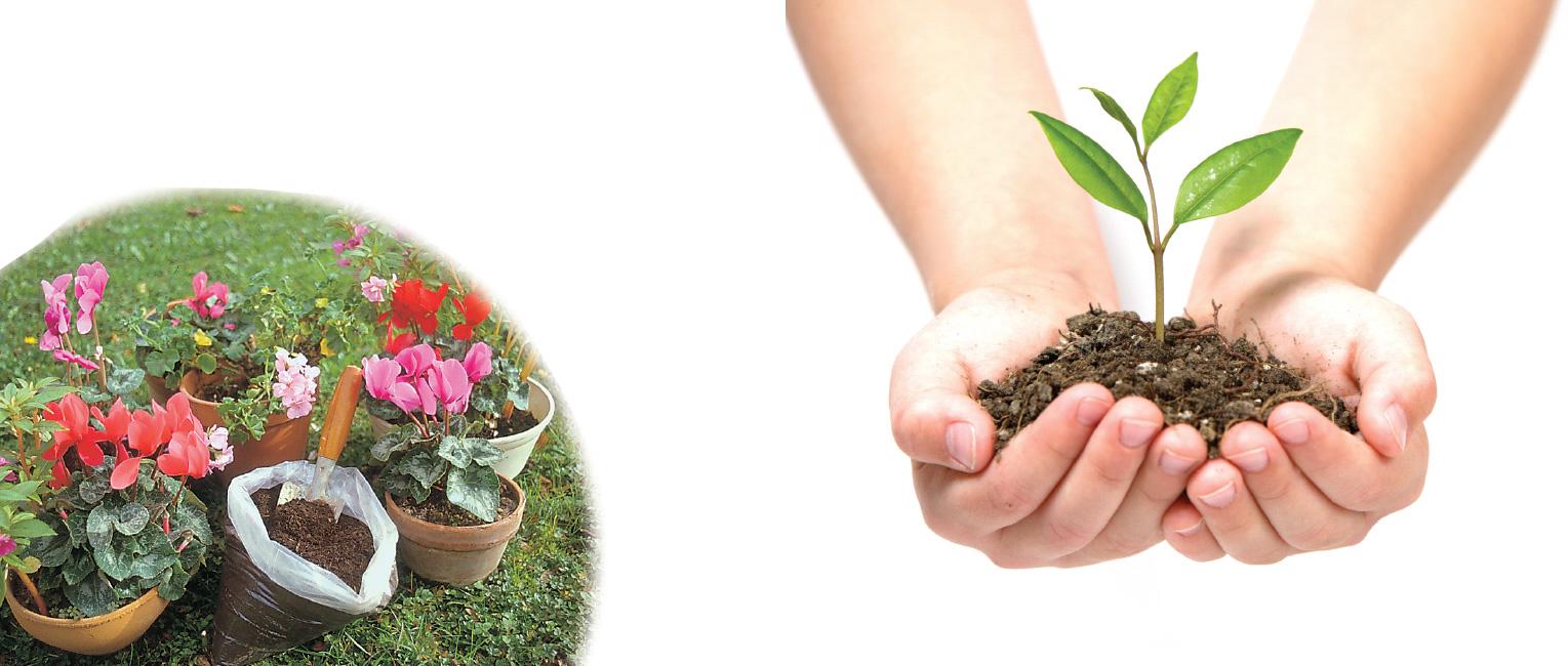 Scarica la guida al compostaggio domestico